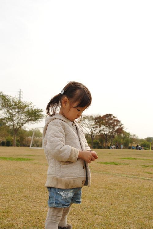 2010_1113_115459dsc_0020b
